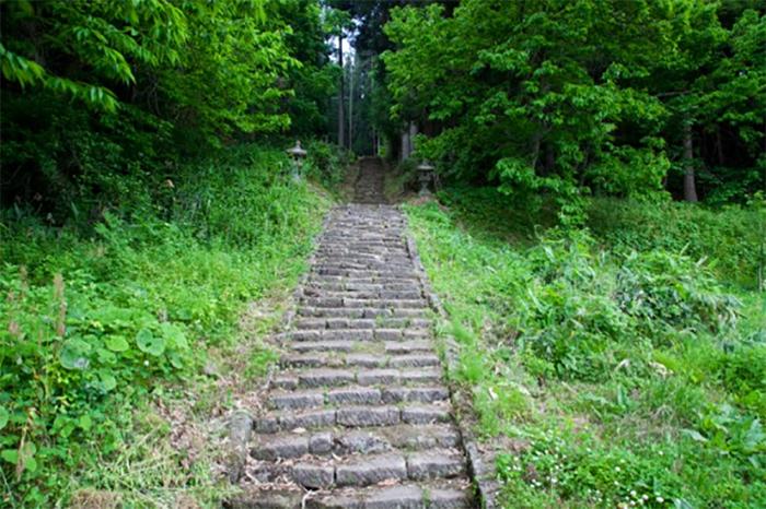 Path-2