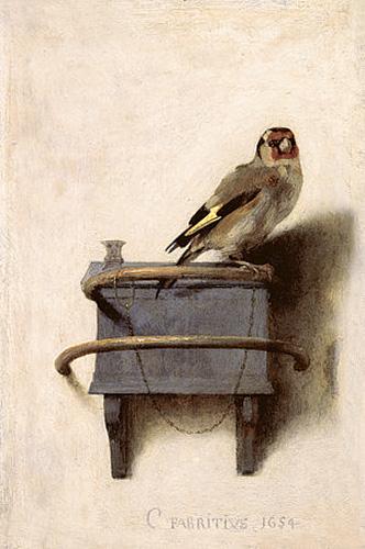 10_Goldfinch