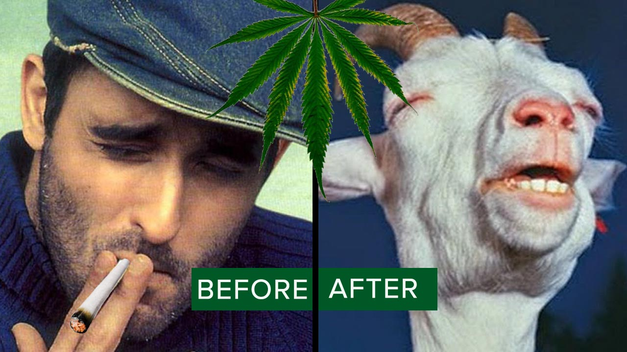 15 Things You Experience After You Smoke Marijuana For The