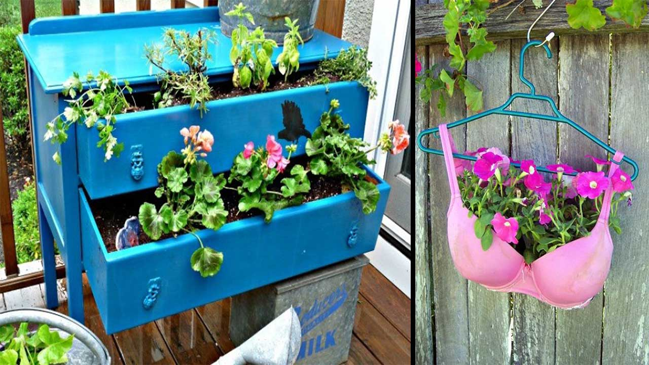 10 Creative Ways To Display Your Indoor Potted Plants