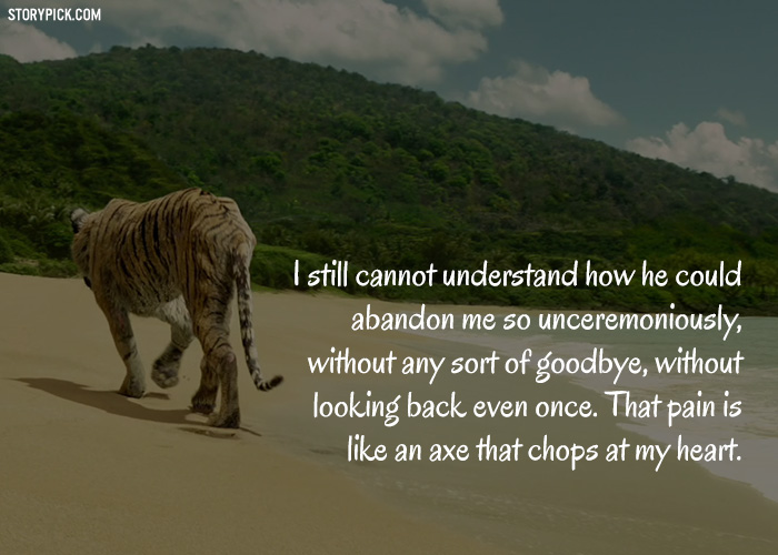 Life Of Pi Quotes 20 Life Of Pi Quotes That Took Us On An Emotional Roller Coaster Life Of Pi Quotes