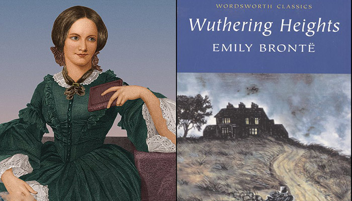 an analysis of the insanity in wuthering heights novel by emily bronte Wuthering heights study guide from litcharts welcome to the litcharts study guide on emily bronte's action in wuthering heights heathcliff, the book's.