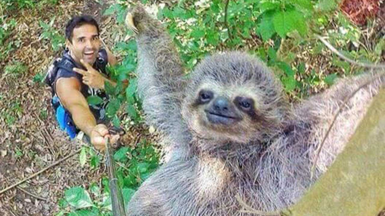 People Are Calling This Man's Epic Selfie With A Sloth The