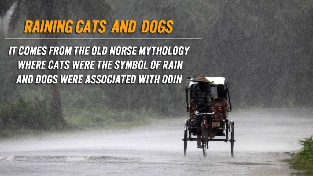 Why Do We Say It's Raining Cats And Dogs? 13 Famous Idioms