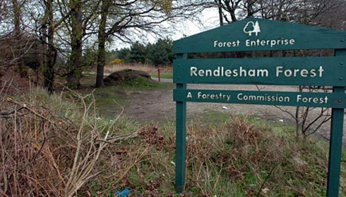 Rendlesham-Forest-Suffolk3