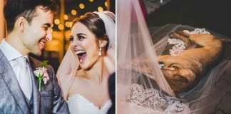 Stray-Dog-Crashes-Wedding-Adopted
