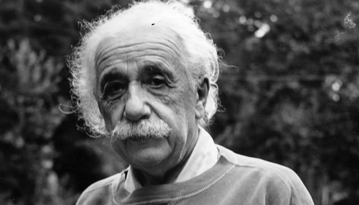 Einstein's personal diary says Indians are stupid?