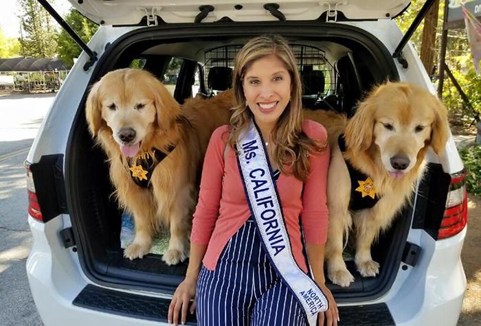California Town Elects A Golden Retriever Dog As Mayor