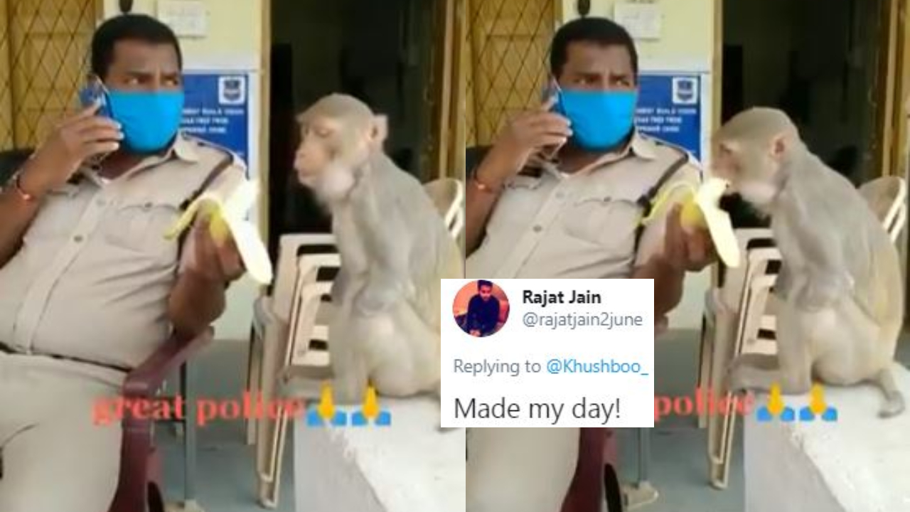 Video Shows Cop Feeding A Banana To A Disabled Monkey, Twitter Reacts