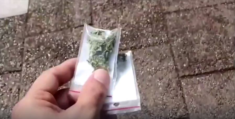 'Green Drone' Drops Hundreds of Bags of Pot on City
